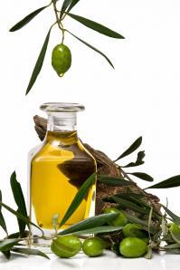 Olive l